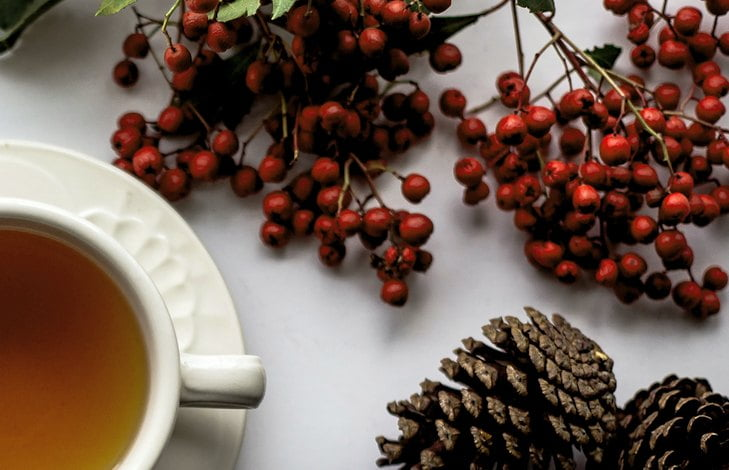 Гречишный чай при сахарном диабете