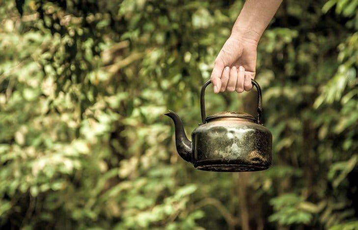 Ферментация чая. Степени чайной ферментации